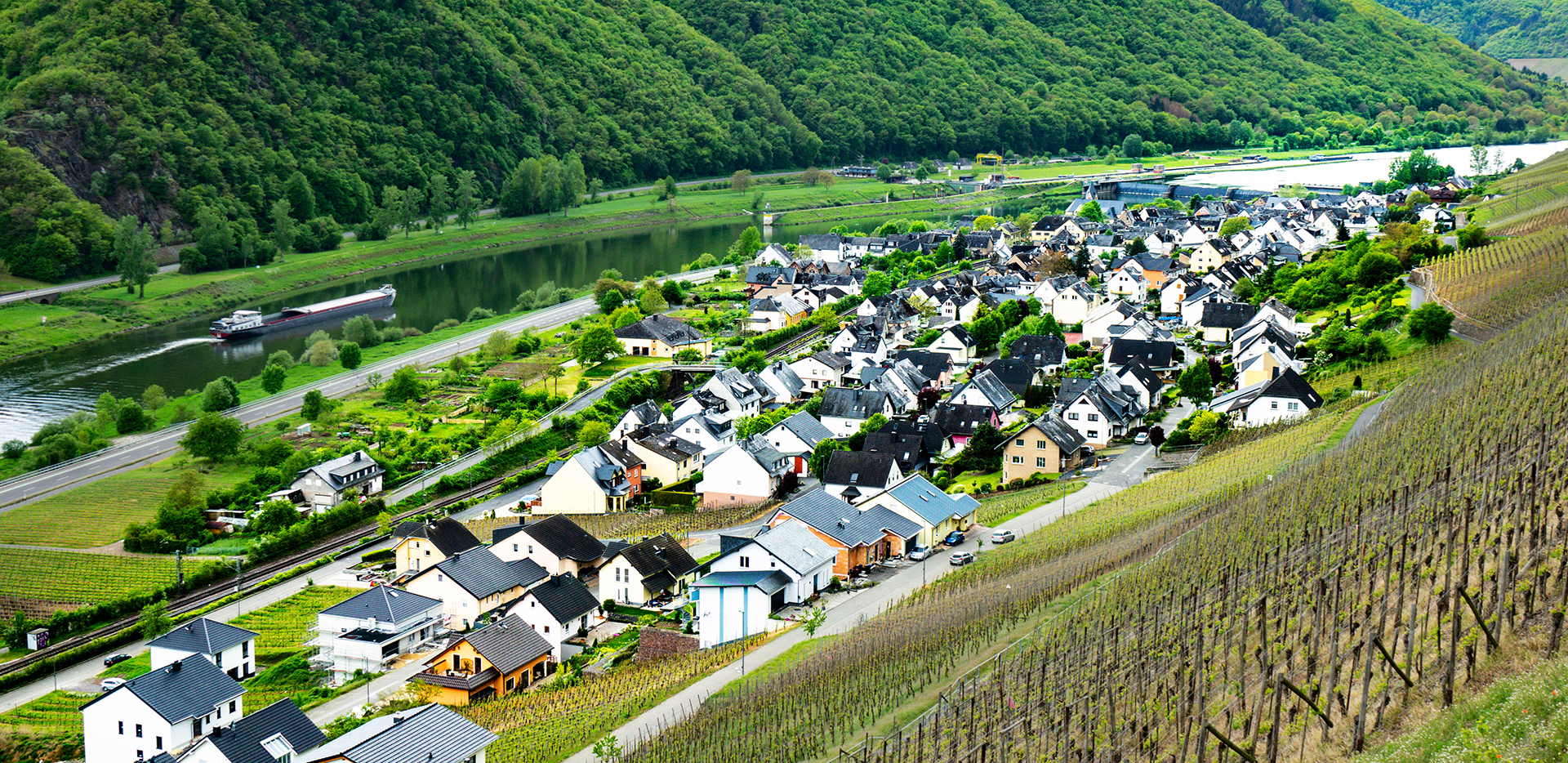 Müden (Mosel) And Vineyards