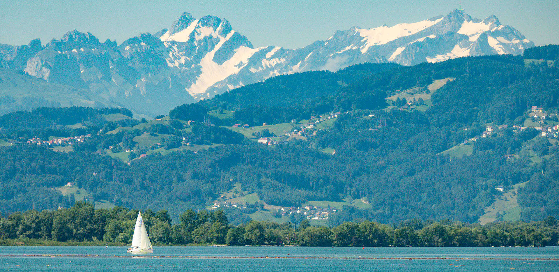 Lake Constance Bodensee Sailboat And Swiss Alps