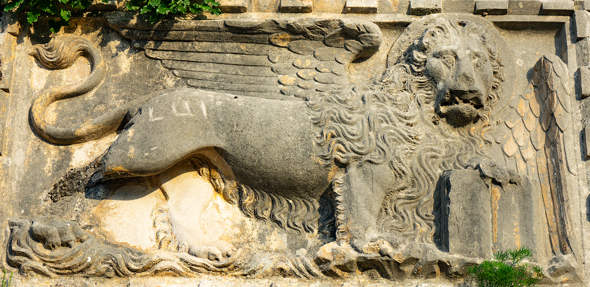 Kotor Fortress Winged Lion Carving