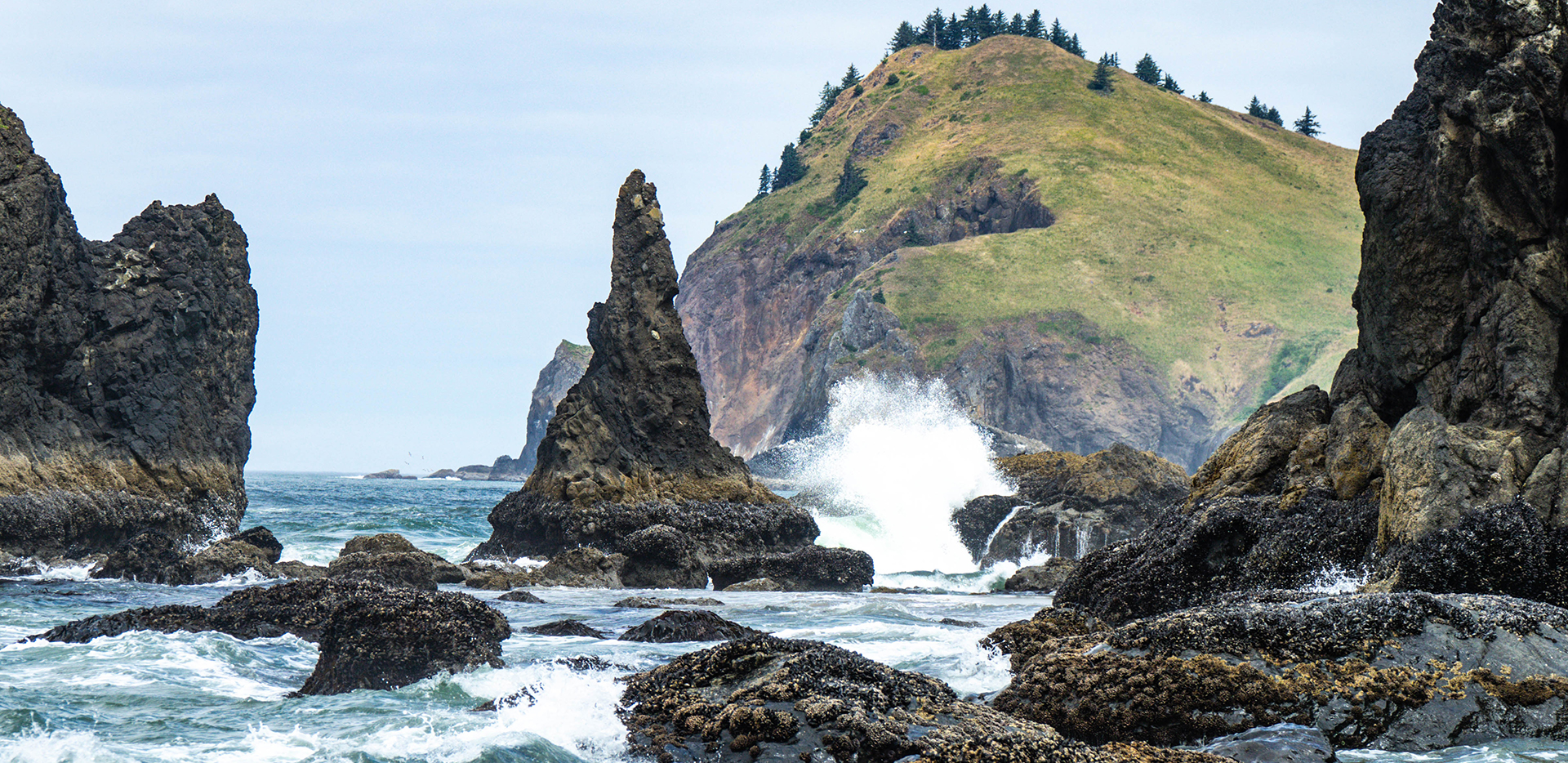 Usa Oregon Roads End State Recreation Site Sea Stacks