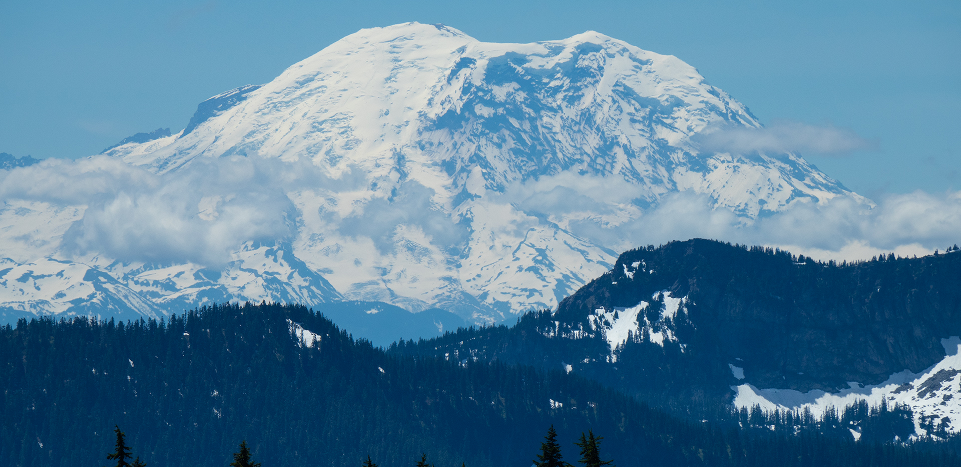 View Of Mount Rainier From Pacific Crest Trail Kendall Katwalk